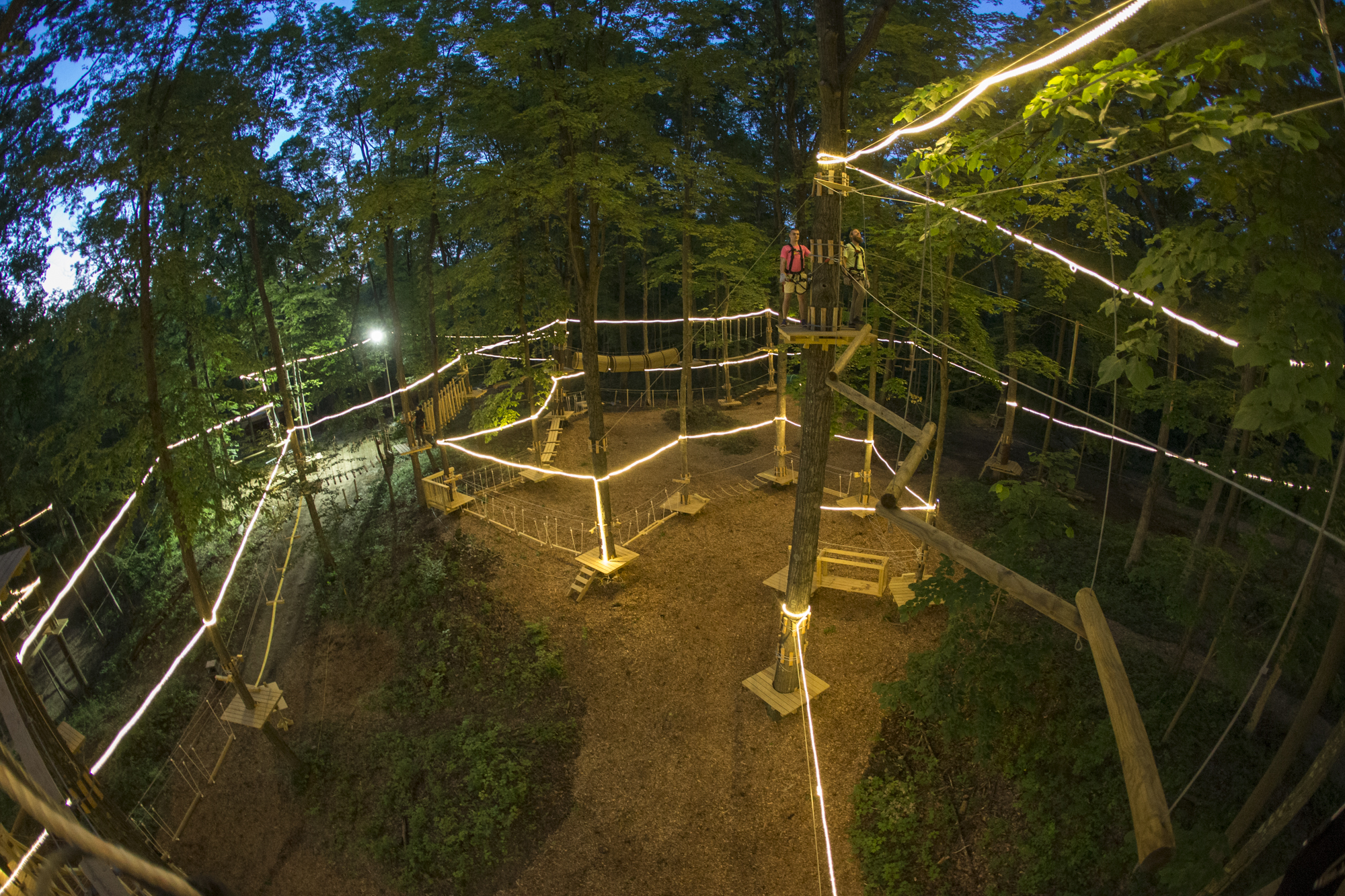 Night Climbs Treescape Aerial Adventure Park